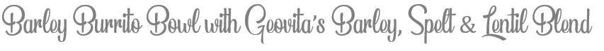 TheSavvyPantry-4VeganGrainBowlsGeovita_Title3-BurritoBowl