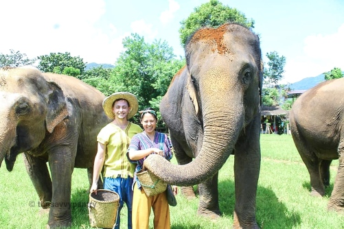 TheSavvyPantry-ChiangMai2Days-Day1-ElephantHappyHome (2)
