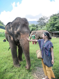 TheSavvyPantry-ChiangMai2Days-Day1-ElephantHappyHome (6)