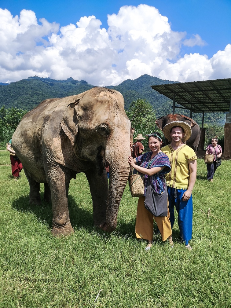 TheSavvyPantry-ChiangMai2Days-Day1-ElephantHappyHome (7)