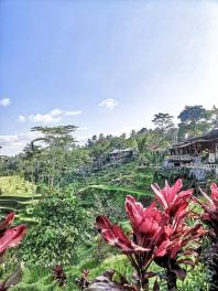 TheSavvyPantry-Bali3DaysItinerary (36)